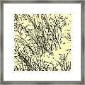 Weeds In Snow Framed Print