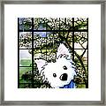 Westie At Dogwood Window Framed Print