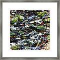 Wet Rocks Framed Print