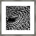 Whirlpool Abstract - Bw Framed Print