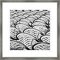 White Plastic Chairs Framed Print