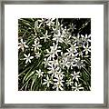 White Spring Flowers Framed Print