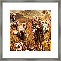 Wild West Mountain View Framed Print