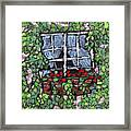Window Flower Box Framed Print