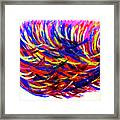 Winds Of Paint Framed Print