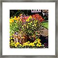 Winebarrel Garden Framed Print