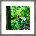 Winter In Paradise Framed Print