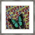Wonderful Green Butterfly Framed Print