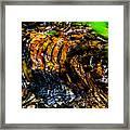 Wood Ridges Framed Print