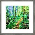 Wooded Trail Framed Print