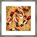 Wooden Toy Soldiers Framed Print