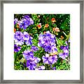 Wp Floral Study 2 2014 Framed Print