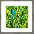 Yellow ... Framed Print