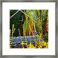 Yellow Weeds Framed Print