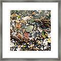 York Beach Shore Framed Print