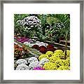 10-19-2008img0225a Framed Print
