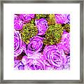 Lv With Lilac Roses  Framed Print