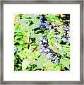 Abstract Summer Garden Framed Print