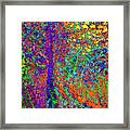 Abstract Visions I Framed Print