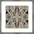 Bark Laces Framed Print