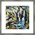 Bash Bish Falls - 3 Framed Print