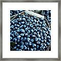Blueberries At Farmers Market Framed Print