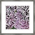 Chrysanthemum Abstract. Framed Print