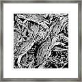 Crabs In The Basket Framed Print