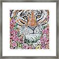 Cuddles The Tiger Small  Framed Print