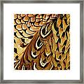Detail Of Pheasant Feathers Framed Print
