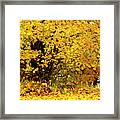 Fall To Grace Framed Print