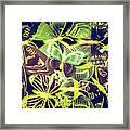 Forest Flutters Framed Print