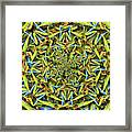 Forms Of Nature #14 Framed Print