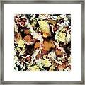 Fractured Viewpoint Framed Print