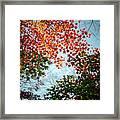 Kuhonbutsu In Autumn Framed Print
