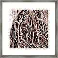 Life Is Complicated - Sepia Framed Print