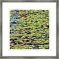 Lilly Pond Painting Framed Print
