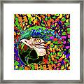 Macaw High I Framed Print