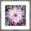 Naturalness And Flowers 38 Framed Print