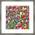 Naturalness And Flowers 55 Framed Print