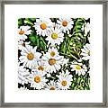 Naturalness And Flowers 57 Framed Print