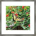 Snacking Framed Print