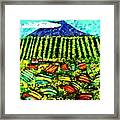 Sumatra Coffee Plantation Framed Print