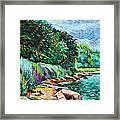 Summer Shore Of Hudson River, New York Framed Print