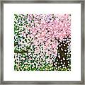 The Scenery Of Spring Framed Print