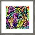 The Stare Of The Wolf Framed Print