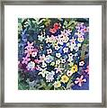 Watercolor - Alpine Wildflower Design Framed Print