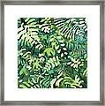 Watercolor - Rainforest Canopy Design Framed Print