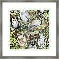Watercolor - Screech Owl And Forest Design Framed Print