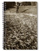 A Run Of Squawfish Stranded In Kelsey Creek Near Kelseyville Lake County April 29 1899 Spiral Notebook